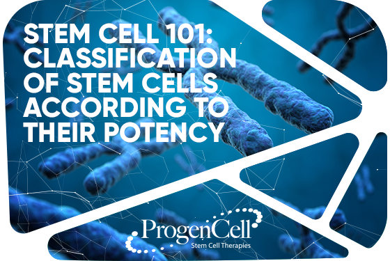 Stem Cells 101: Classification of Stem Cells according to their potency.
